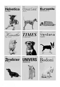 Si los Fonts fuesen perros